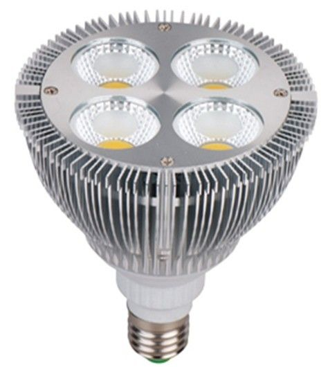 1600lm 16 Watt Led Spot Lighting Cob Ac 220v , Par30 E27 Led Spot Light